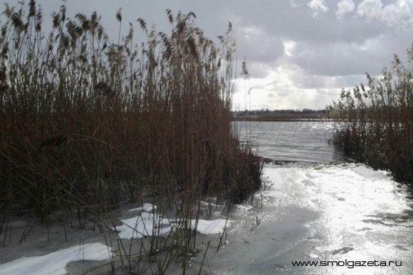 В Смоленской области продолжается весеннее потепление