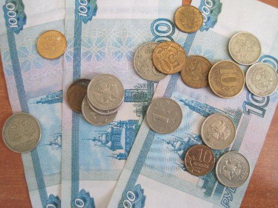 Фирмы с начала года задолжали своим работникам более 50 миллионов рублей