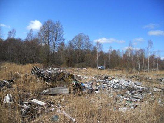 В трех районах Смоленщины нашли незаконные свалки почти на пять гектар
