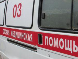 После наезда иномарки на лося пассажирку увезли в больницу