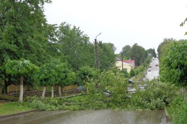 Обрушившийся на Смоленскую область ураган оставил без света сотни домов