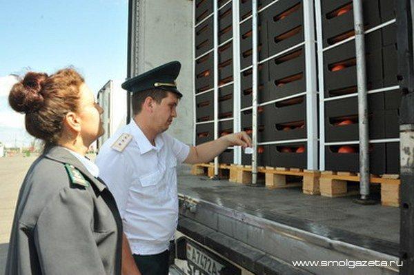 Смоленские таможенники задержали 100 тонн санкционных яблок, томатов и клубники