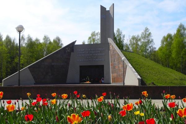 В Смоленске в Реадовском парке погас Вечный огонь