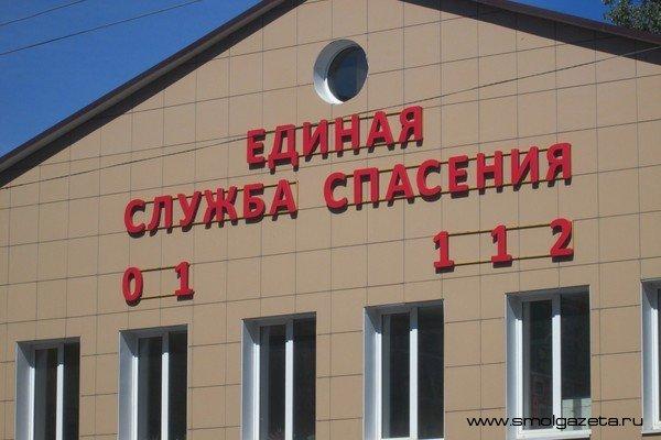 В Смоленской области сгорел мебельный склад