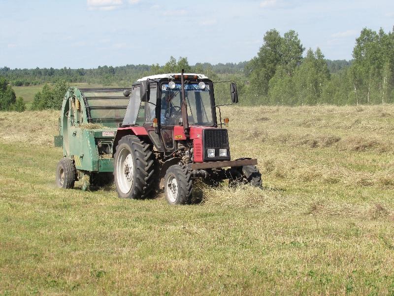 Президент России отметил работу смоленского агропрома