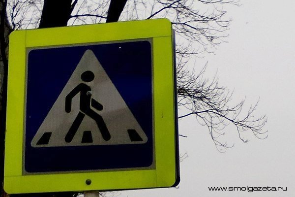 В Смоленске разыскивают водителя, сбившего 14-летнюю школьницу