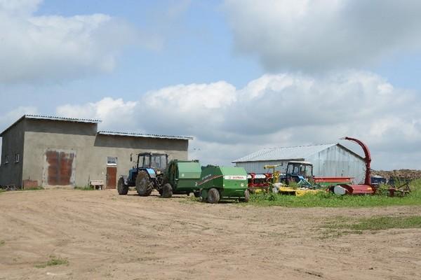 В Смоленской области успешно развивается производство мраморной говядины