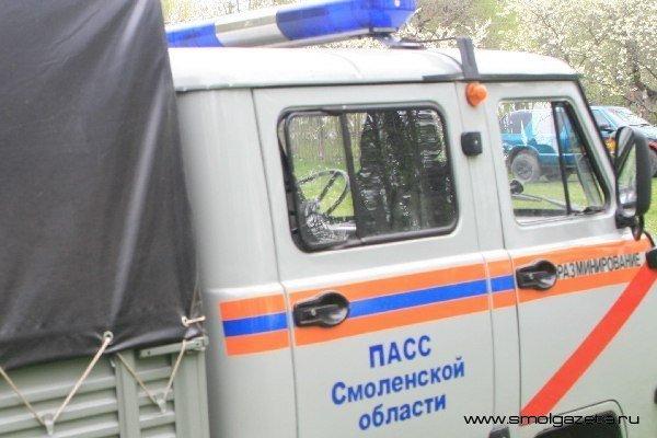 В Смоленской области взорвали полсотни мин и снарядов