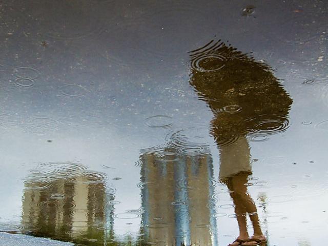 В пятницу в Смоленской области ожидаются дожди с грозами