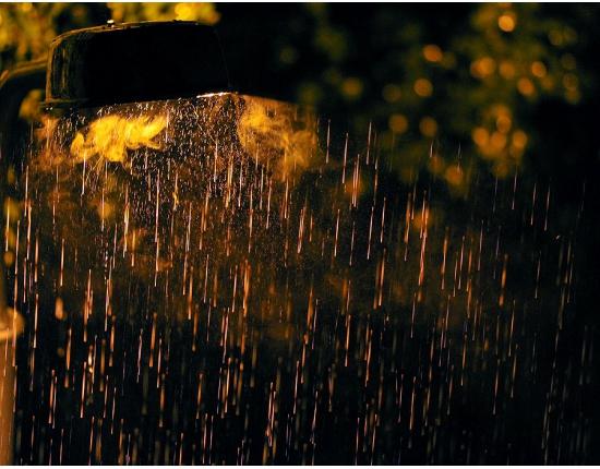 Ночью в Смоленской области ожидаются дожди