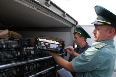 Смоленские таможенники задержали санкционные виноград и шампиньоны