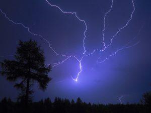 Ночью в Смоленской области ожидаются дожди с грозами