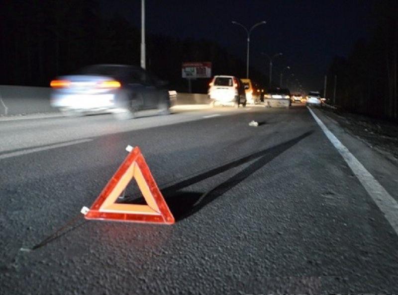 С начала года в Смоленской области на трассе М1 погибли шесть пешеходов