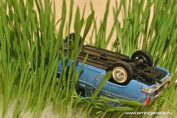 В Ершичах «Форд» доставали из кювета. Есть пострадавший