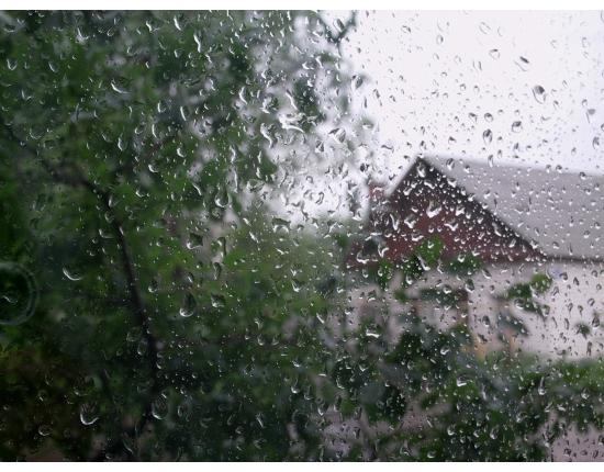 14 сентября в Смоленской области ожидаются кратковременные дожди