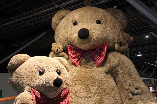 Услуги интернет-магазина «Big Teddy»
