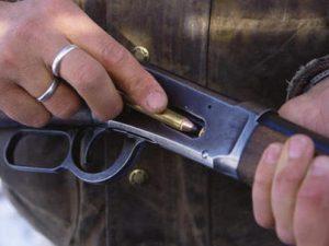 В Смоленской области браконьеру, застрелившему лося, грозит арест на полгода