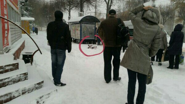 В Смоленске на остановке умер мужчина