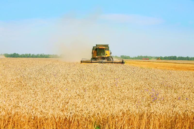 В Вязьме реанимируют зерноперерабатывающий комбинат