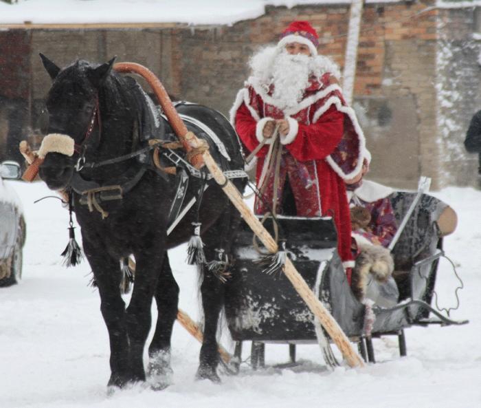 В Смоленске на ипподроме покажут «Новогодние сказки»