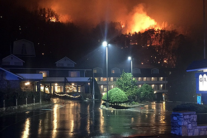 При лесных пожарах в Теннесси погибли 11 человек