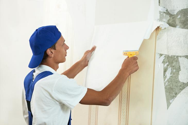 Профессиональная покраска стен и оклеивание стен обоями по доступной цене!