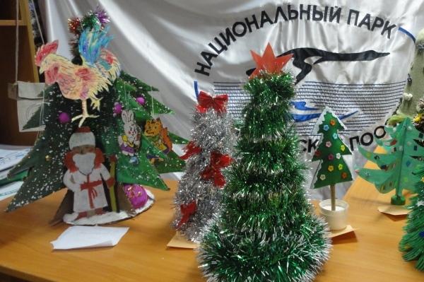 В Смоленском Поозерье выбрали самую креативную новогоднюю красавицу