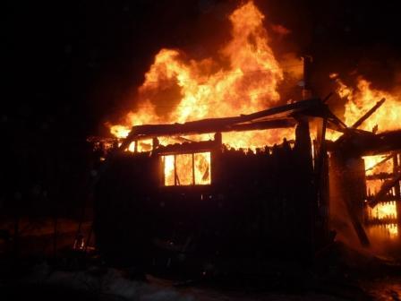 В Смоленске при пожаре погибли 29 животных