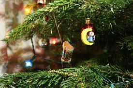 Выбор и правильный уход за новогодней елкой