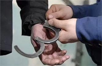 Полицейские поймали смолянина, совершившего 20 краж