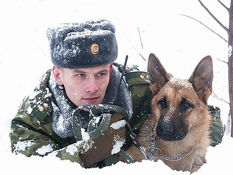Смоленские пограничники задержали 13 нарушителей