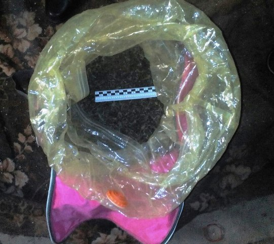 Полицейские нашли у 38-летней смолянки полтора килограмма марихуаны