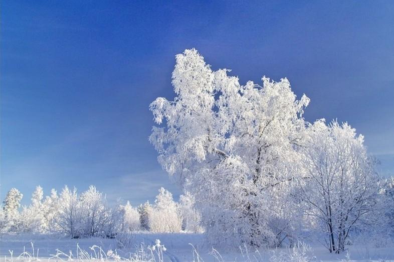 В четверг в Смоленске ожидается до -22°С
