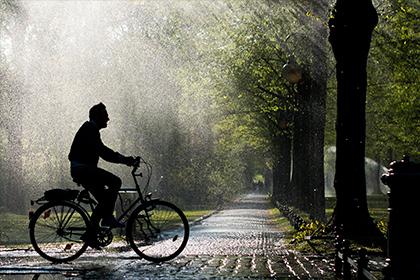 Неизвестный велосипедист плеснул кислотой в лицо жительнице Берлина