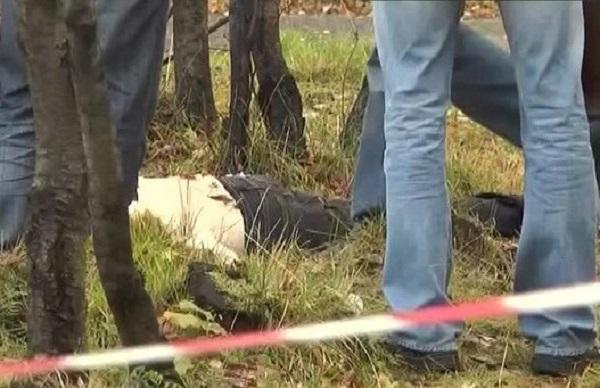 В Смоленской области на берегу реки обнаружено тело женщины