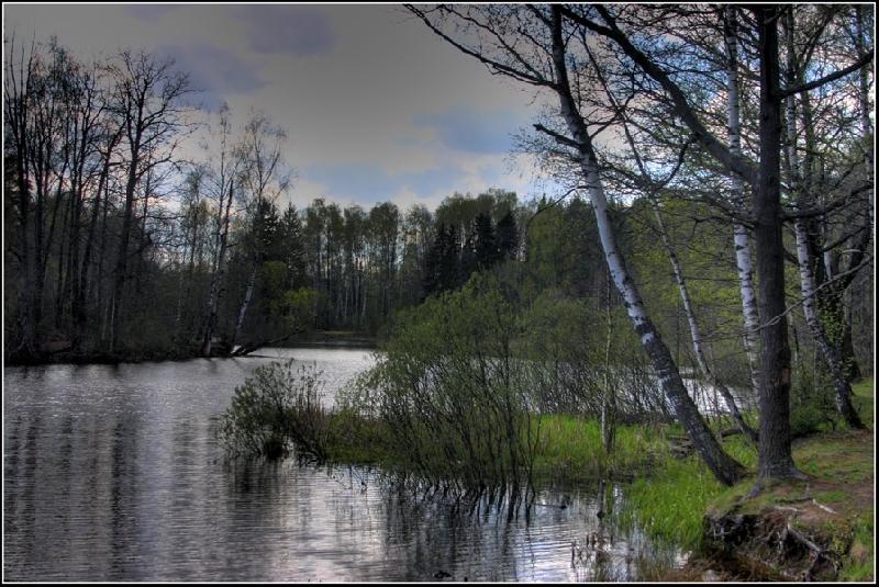 В Смоленской области сохранится холодная погода