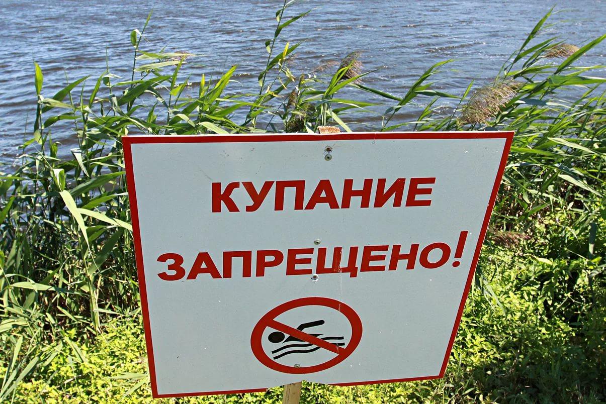 В Смоленске сообщили, где можно будет купаться этим летом