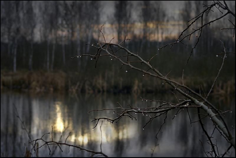 Ночью в Смоленской области похолодает до –11°C