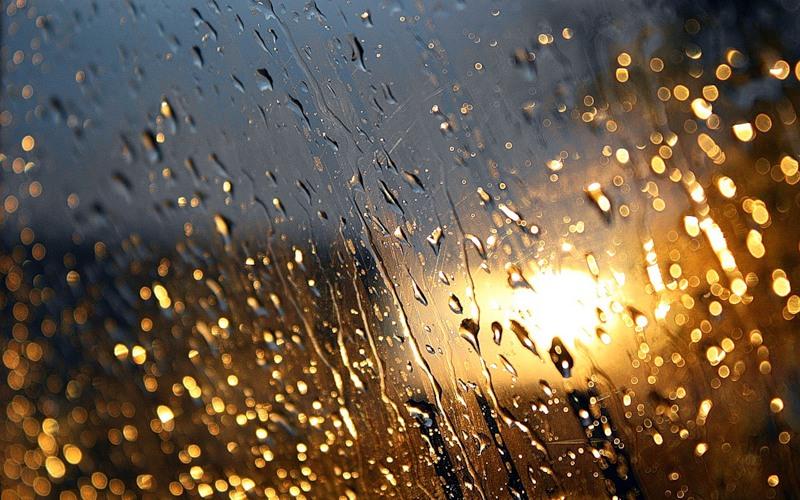 В пятницу в Смоленской области будет дождливо