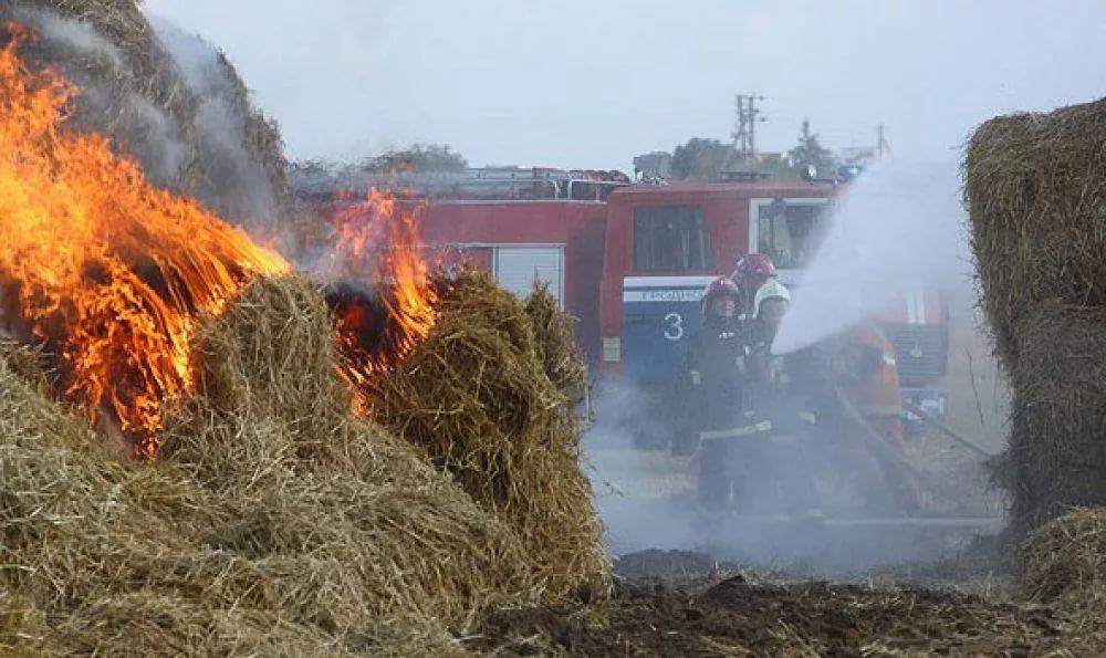 В Ершичском районе сгорели 40 тонн сена