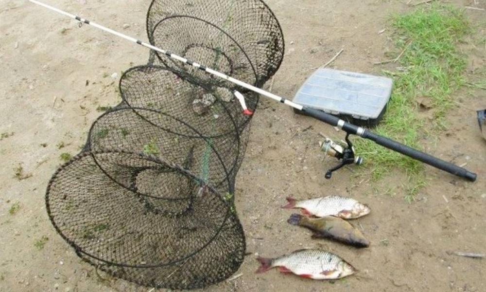 В Смоленской области поймали браконьеров, рыбачивших в природном парке