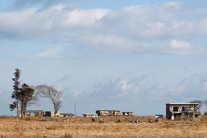 Мощный лесной пожар начался в районе японской АЭС «Фукусима-1»