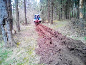 В Смоленской области началась работа по профилактике лесных пожаров