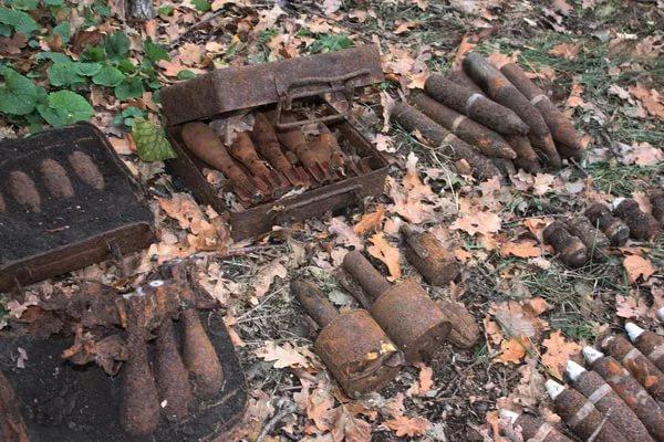 В Смоленской области были уничтожены более четырехсот боеприпасов времен войны
