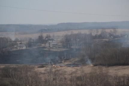 В Смоленской области произошли 464 случая пала сухой травянистой растительности