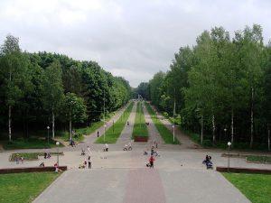 В Смоленске в Реадовском парке восстановят лестницу к роднику