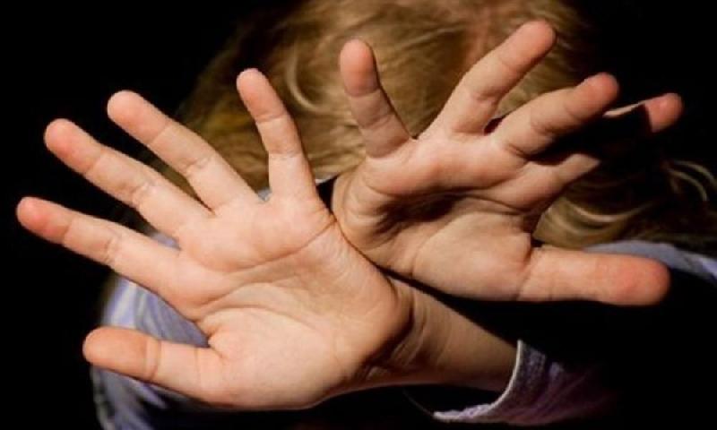 Смолянина задержали за изнасилование девятилетней девочки в Подмосковье