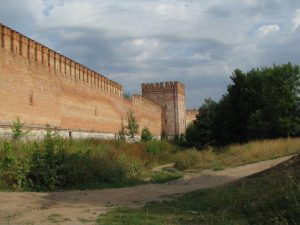 В Смоленске 64-летний житель Калужского региона сорвался с Крепостной стены и разбился насмерть