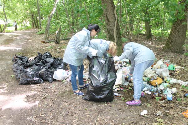 В Смоленске активисты ОНФ убрали свалку в Реадовском парке