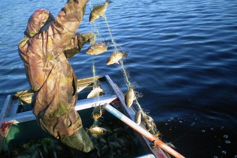 В Смоленской области будут судить депутата, обвиняемого в браконьерстве